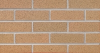Burnt Almond (W21-22) Thin Brick 3/4""