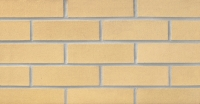 Beige with Speck (S42) Thin Brick 3/4""