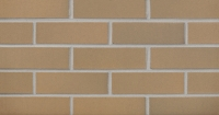 Burnt Almond Flashed (FS21-22) Thin Brick 3/4""