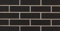 Black Pearl (SA11-9003)