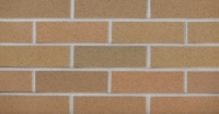 Burnt Almond Flashed (FW21-22) Thin Brick 3/4""