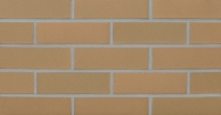Burnt Almond (S21-22) Thin Brick 3/4""