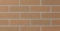 Burnt Almond Ironspot (SIS21-22) Thin Brick 3/4""